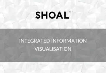 Integrated information visualisation