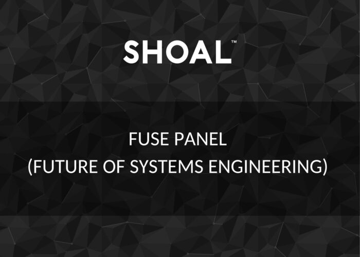 Future of systems engineering