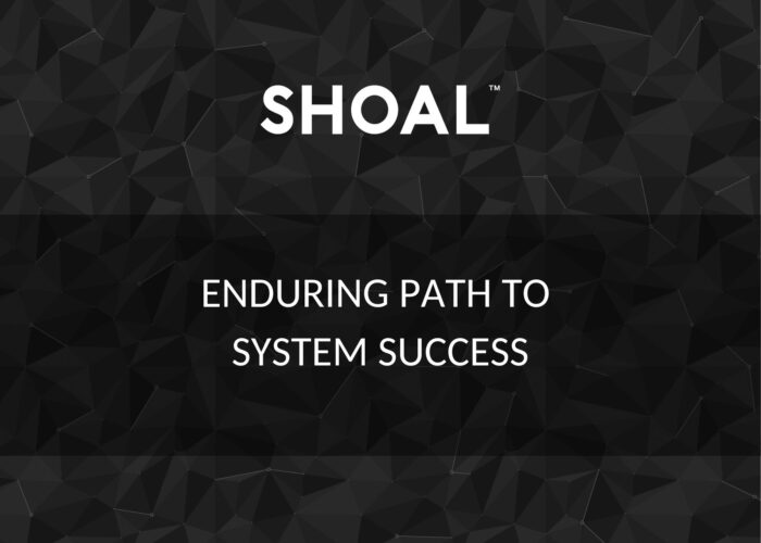 Enduring path to system success