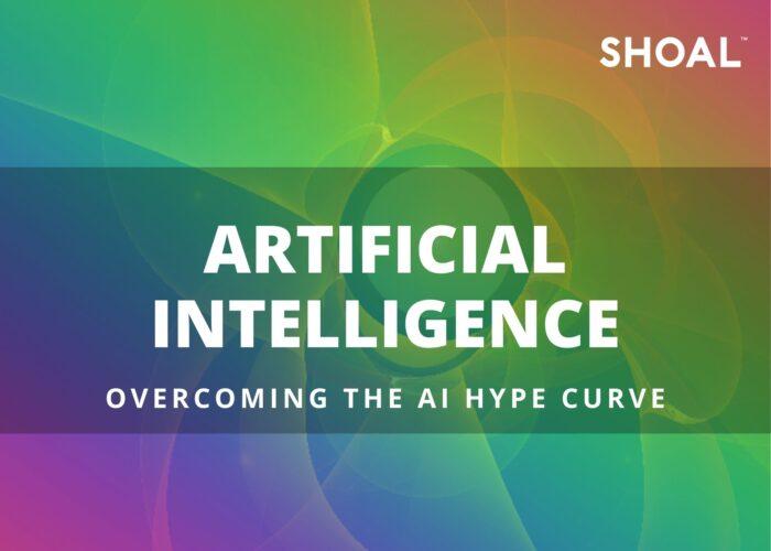 Overcoming the AI Hype Curve